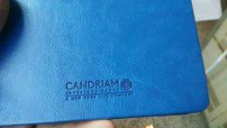 candrium pu leather