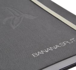 silver infill logo on book cloth